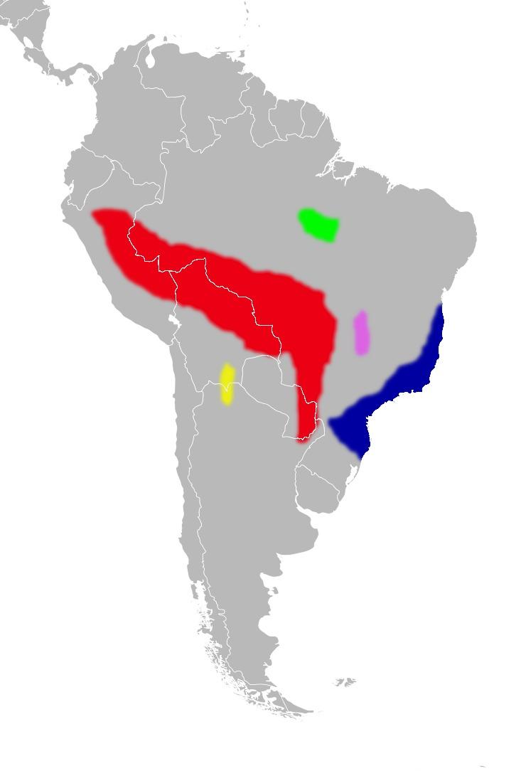 """<span class=""""translation_missing"""" title=""""translation missing: en.medium.untitled.map_image_of, page_name: &lt;i&gt;Euryoryzomys emmonsae&lt;/i&gt; (Musser, Carleton, Brothers &amp; Gardner 1998)"""">Map Image Of</span>"""