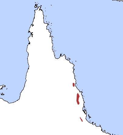 Map of Rusty Antechinus