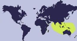 "<span class=""translation_missing"" title=""translation missing: en.medium.untitled.map_image_of, page_name: &lt;i&gt;Palmadusta ziczac&lt;/i&gt; (Linnaeus 1758)"">Map Image Of</span>"
