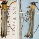 Image of <i>Oberea monticola</i> Fisher 1935
