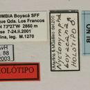Image of <i>Nyctonympha boyacana</i> Galileo & Martins 2008