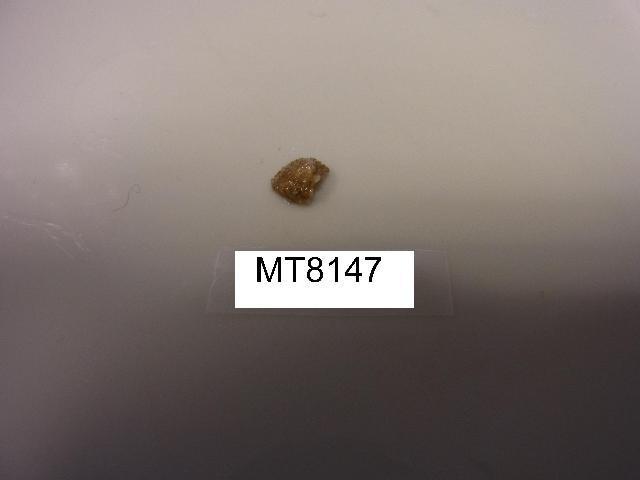 539.bnsci mt08147 1390415958 jpg