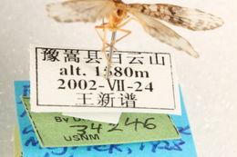 539.lnaut ccdb 22939 c06 label 1401207960 jpg.260x190