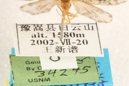 539.lnaut ccdb 22939 c07 label 1401207960 jpg.260x190