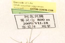 539.lnaut ccdb 22939 c08 label 1401207960 jpg.260x190