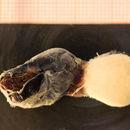 Image of <i>Anelasma squalicola</i> (Lovén 1844)
