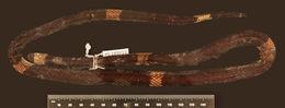 Image of <i>Micrurus hemprichii</i> ssp. <i>rondonianus</i> Roze & Da Silva 1990