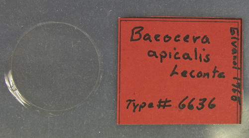 269.187549