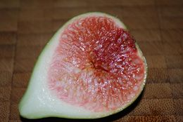 Image of Fig