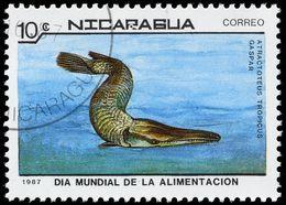 Image of tropical gar
