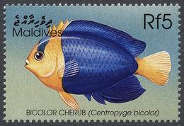 Image of Bicolor Angelfish
