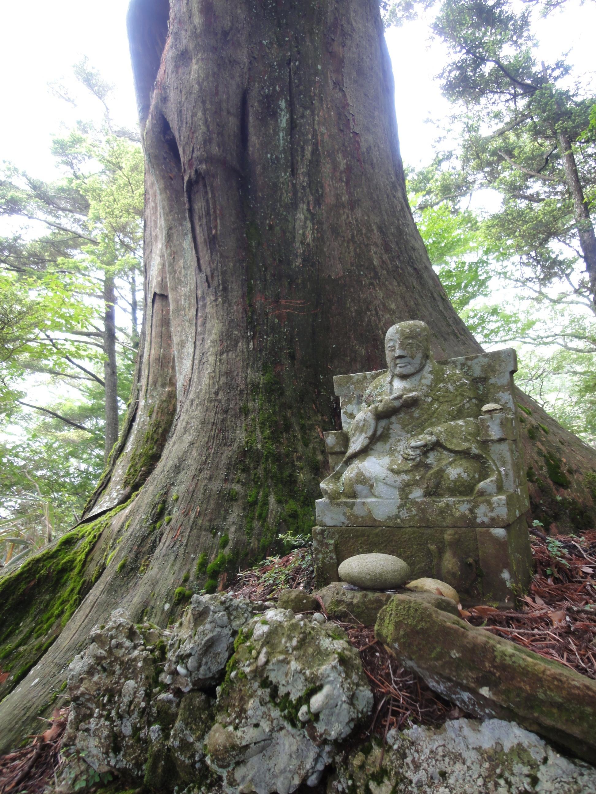 Image of Koyamaki
