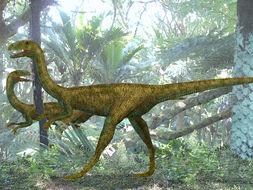 Image of <i>Elaphrosaurus bambergi</i> Janensch 1920