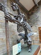 Image of Megatherium Cuvier 1796