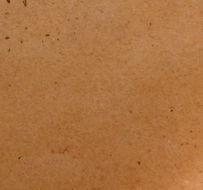 Image of <i>Pachyella violaceonigra</i> (Rehm) Pfister 1974