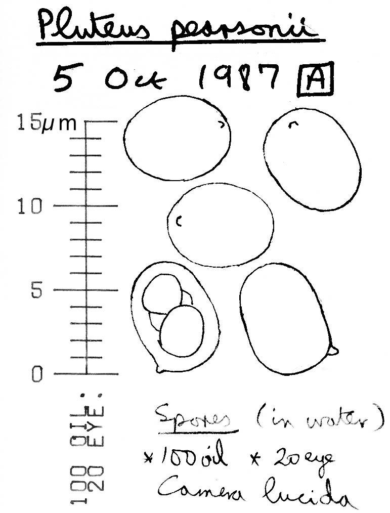549.bi image 90434