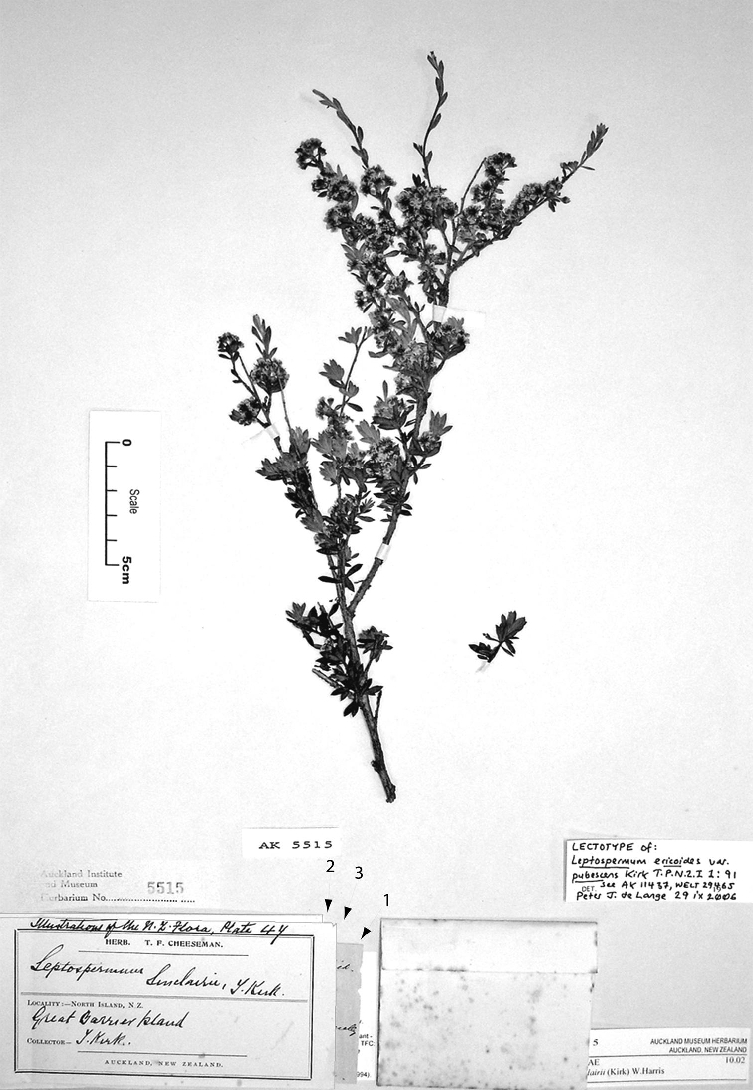 581.phytokeys 40 7973 sp 10 p 4