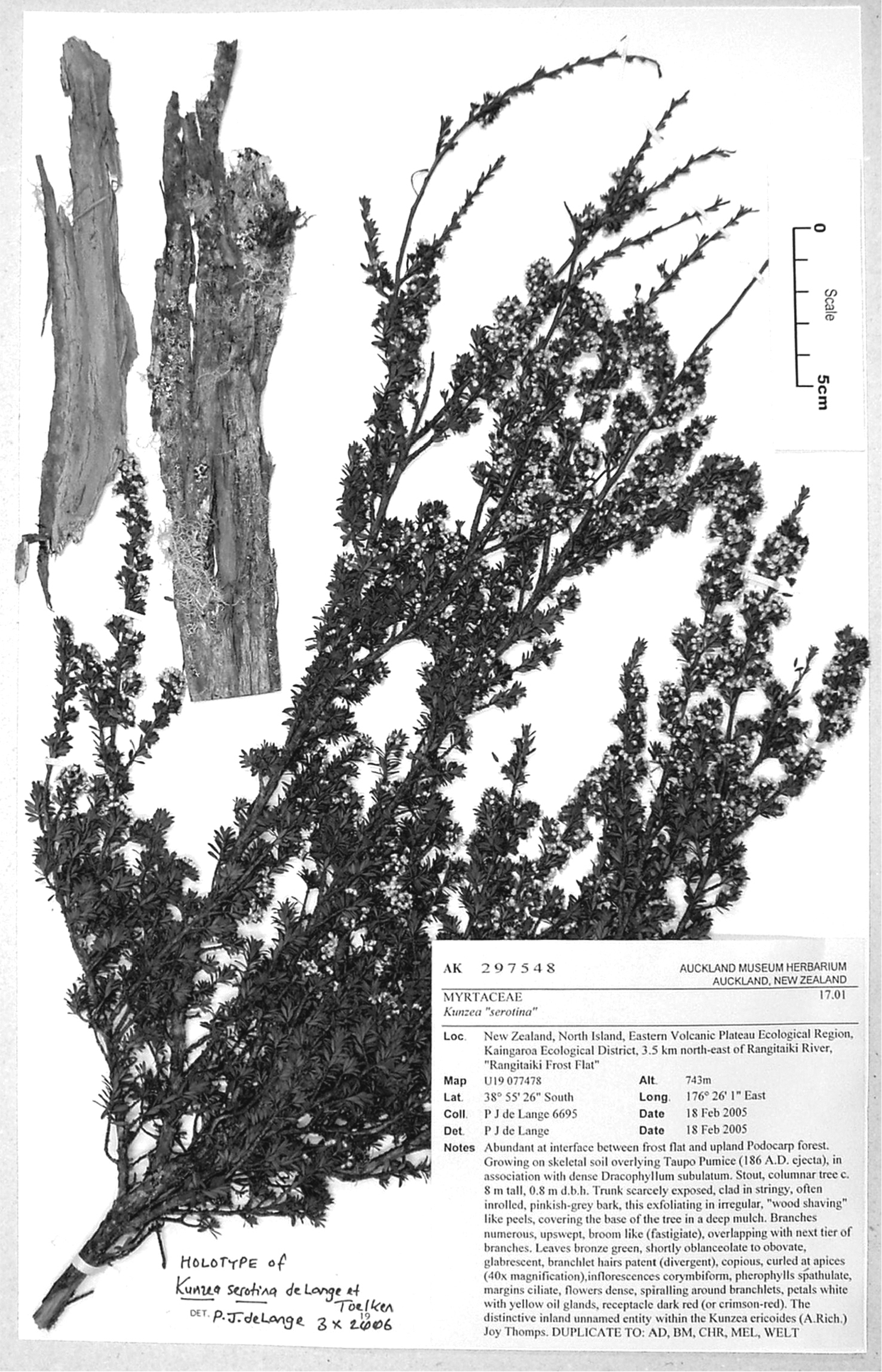 581.phytokeys 40 7973 sp 3 p 1