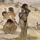 Image of <i>Homo neanderthalensis</i> King 1864