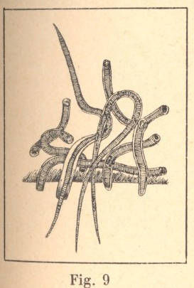 680.19670855