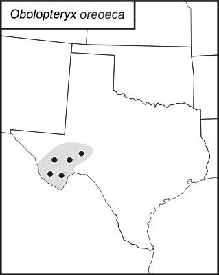 Map of Mountain-dwelling Short-winged Katydid
