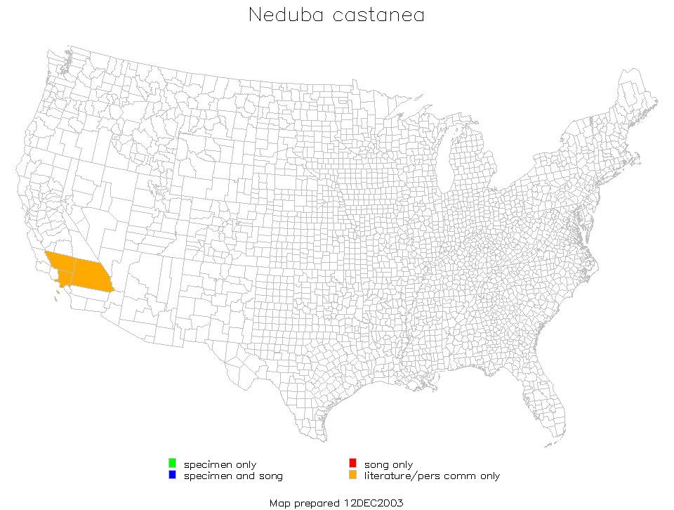 Map of <i>Neduba castanea</i> (Scudder & S. H. 1899)