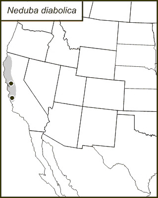 Map of <i>Neduba diabolica</i> (Scudder & S. H. 1899)