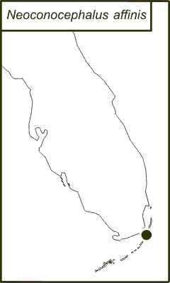 Map of Rattler Conehead