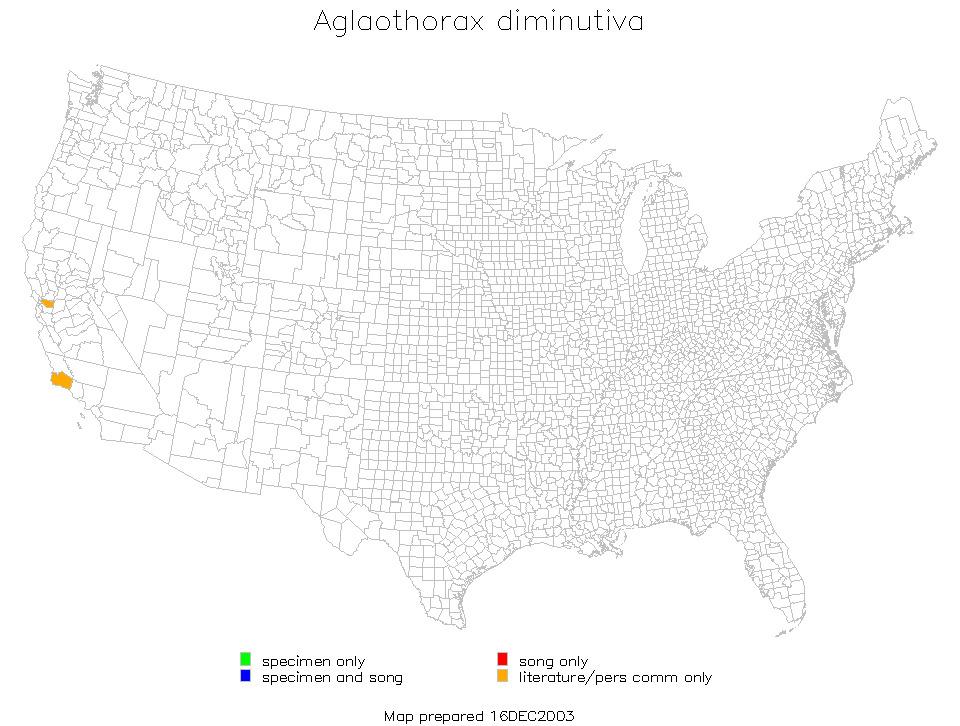 Map of <i>Aglaothorax diminutiva</i> (Rentz, D. C. F. & Birchim 1968)