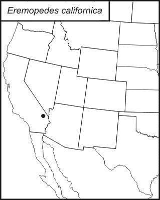 Map of <i>Eremopedes</i> (<i>Oreopedes</i>) <i>californica</i> Rentz & D. C. F. 1972