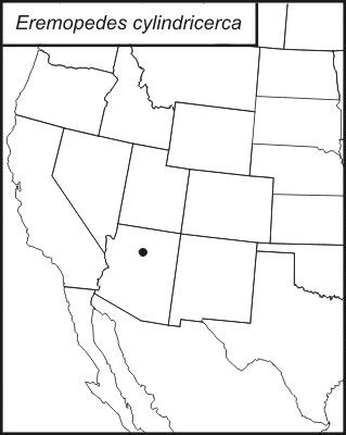 Map of <i>Eremopedes</i> (<i>Oreopedes</i>) <i>cylindricerca</i> Rentz & D. C. F. 1972