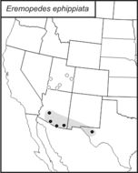 Map of Saddled Shieldback