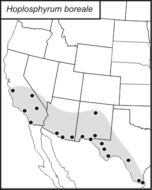 Map of Long-winged Scaly Cricket